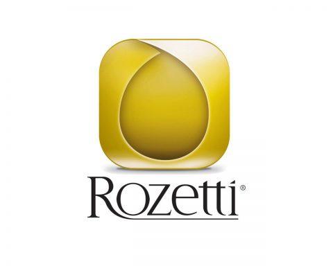 دوربین مداربسته کارخانجات Rozetti